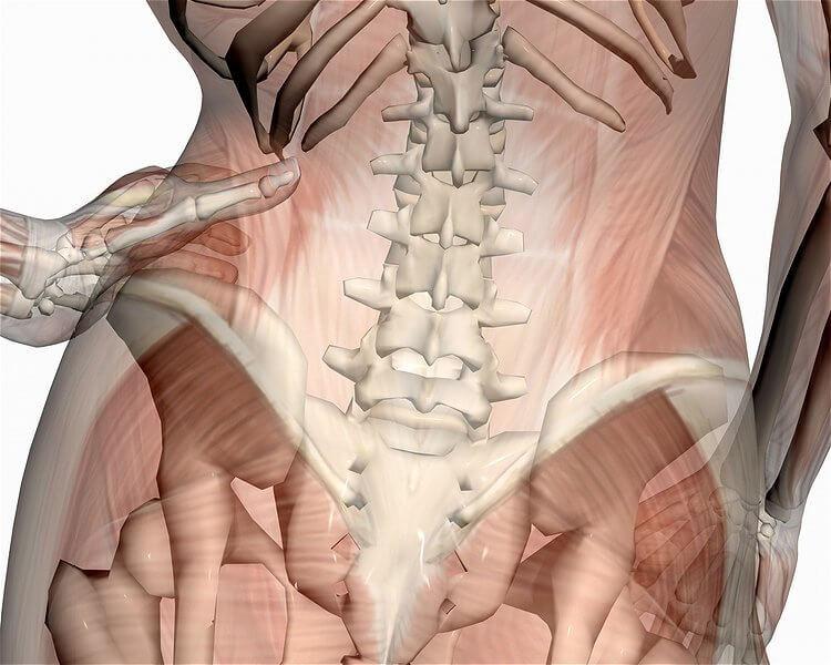 Причины бесплодия и основные методы лечения остеопатии